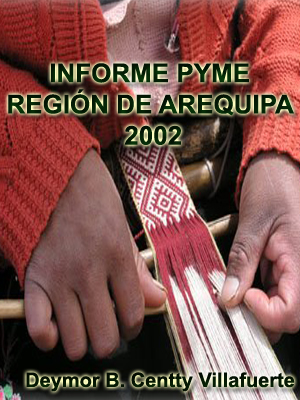 INFORME PYME ¿ REGIÓN DE AREQUIPA 2002