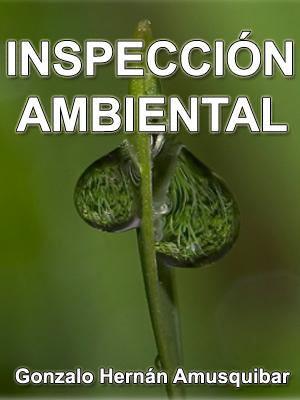 INSPECCI�N AMBIENTAL