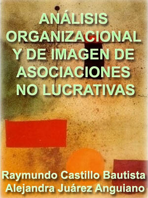 ANÁLISIS ORGANIZACIONAL Y DE IMAGEN DE ASOCIACIONES NO LUCRATIVAS
