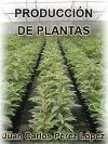 PRODUCCIÓN DE PLANTAS