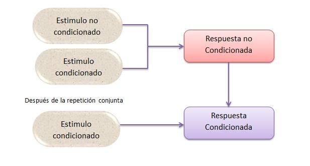 comportamiento del consumidor schiffman pdf