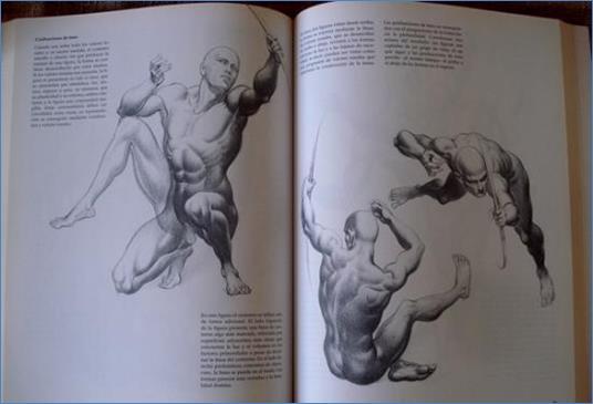 La Anatomía Y Los Dibujos Y Grabados De Grandes Maestros - Libro Gratis