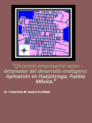 EFICIENCIA EMPRESARIAL COMO DETONADOR DEL DESARROLLO ENDÓGENO. APLICACIÓN EN HUEJOTZINGO, PUEBLA MÉXICO